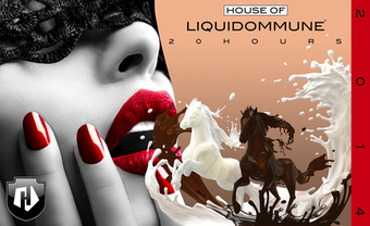 HOUSE.OF.LIQUIDOMMUNE2014.SMALL2.jpg